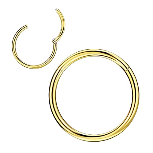 Nose Ring 18G or 20G Combo Hoop Screw Surgical Steel Rose Gold IP
