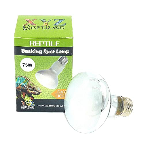 Ubuy Turkey Online Shopping For Terrarium Heat Lamps Amp Mats In Affordable Prices